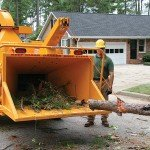 Optional Hydraulic Winch easily presents the big material to the feed wheel.